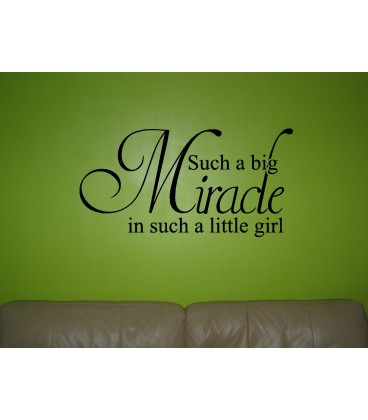 Little miracle girls bedroom wall sticker kit, children bedroom decals.