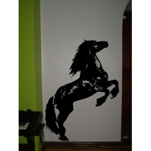 Wild horse, vinyl wall stickers. Home decor.